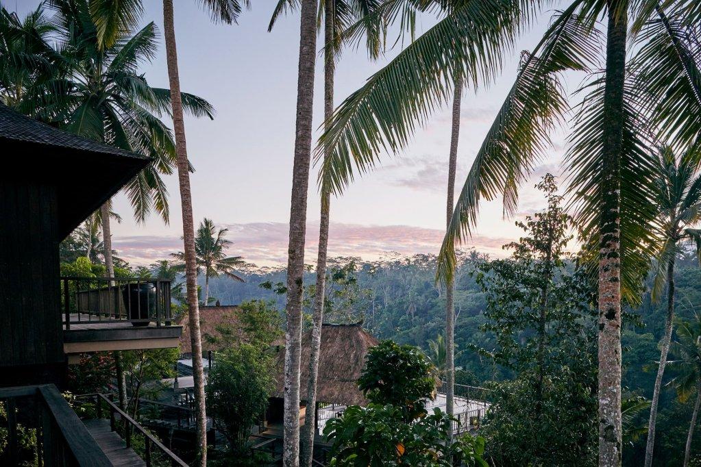 Hoshinoya Bali, Ubud Image 31