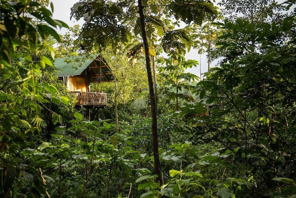 La Tigra Rainforest Lodge Image 32