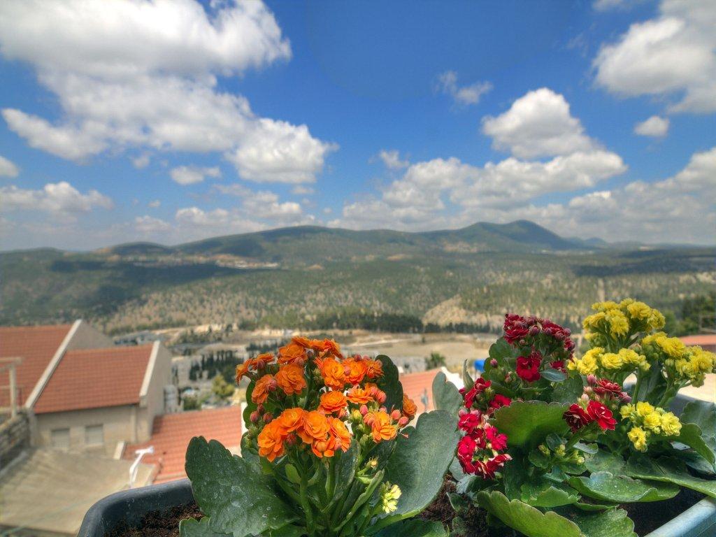 Nofesh Baatika, Safed Image 47