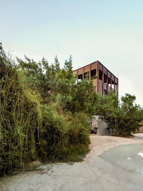 Punta Caliza Image 25