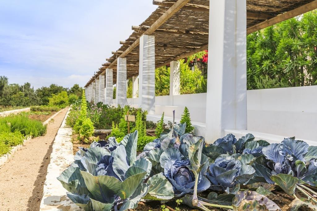Vila Monte Farm House, Moncarapacho Image 26