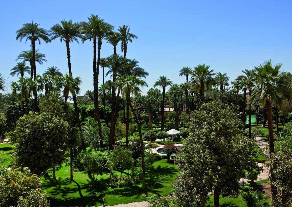 Pavillon Winter Luxor Image 11