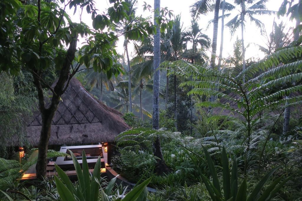 Hoshinoya Bali Image 5