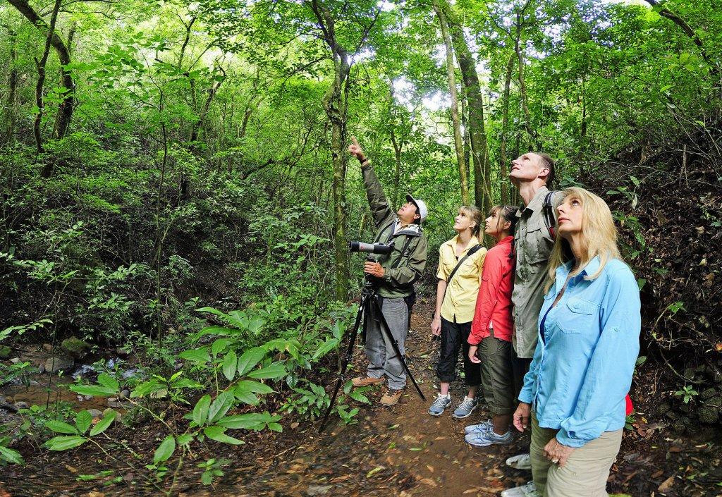 Monteverde Lodge & Gardens Image 30
