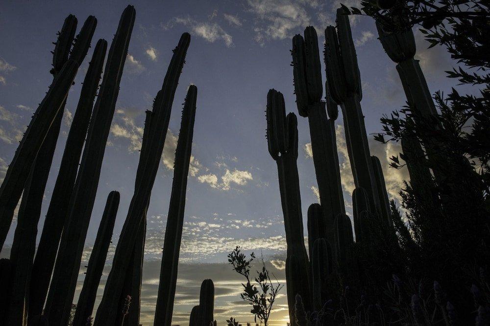 Hotel Matilda, San Miguel De Allende Image 30