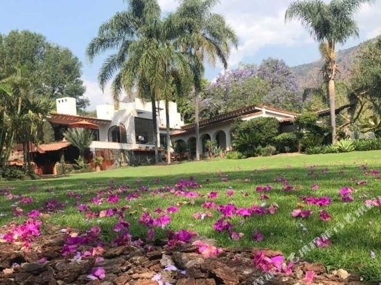 Hotel Amomoxtli,  Tepoztlan Image 51