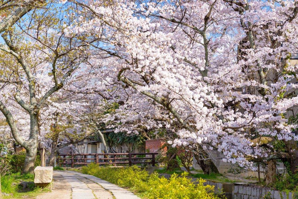 Hiiragiya Ryokan, Kyoto Image 9