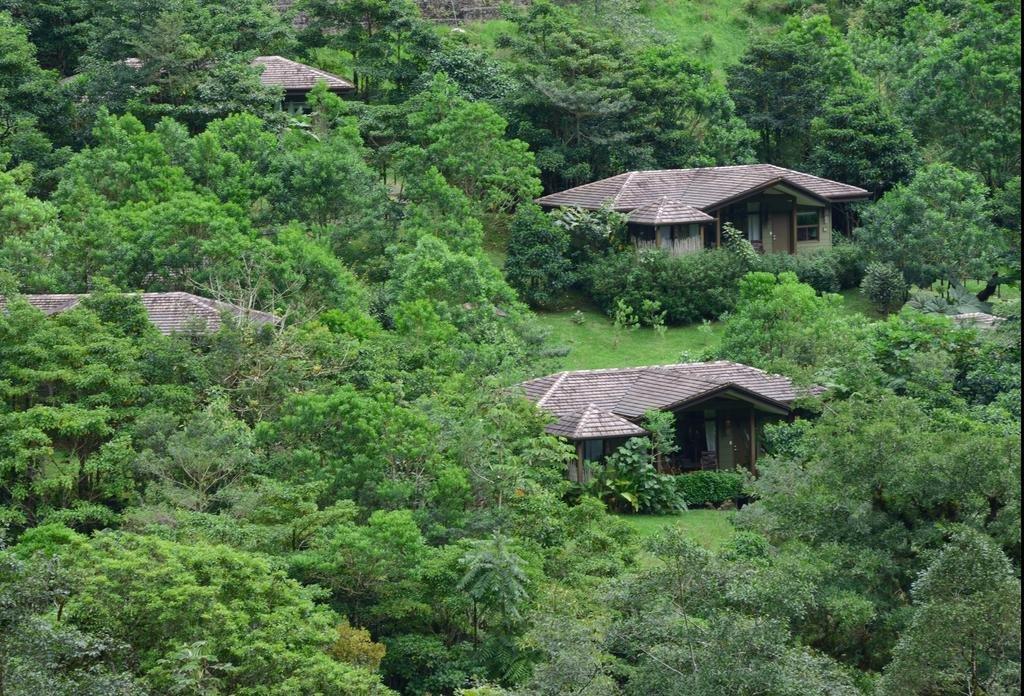 El Silencio Lodge & Spa, Bajos Del Toro Image 26