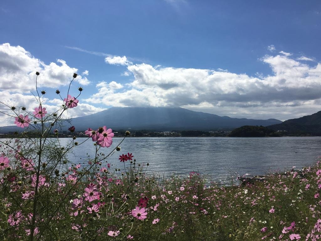 Fuji Onsenji Yumedono Image 28