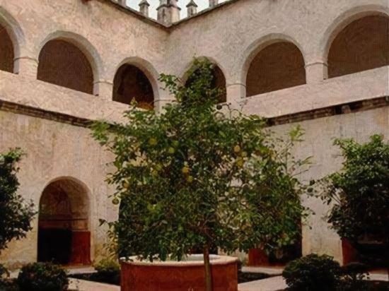 Hotel Amomoxtli,  Tepoztlan Image 60