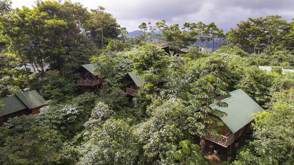 La Tigra Rainforest Lodge Image 29