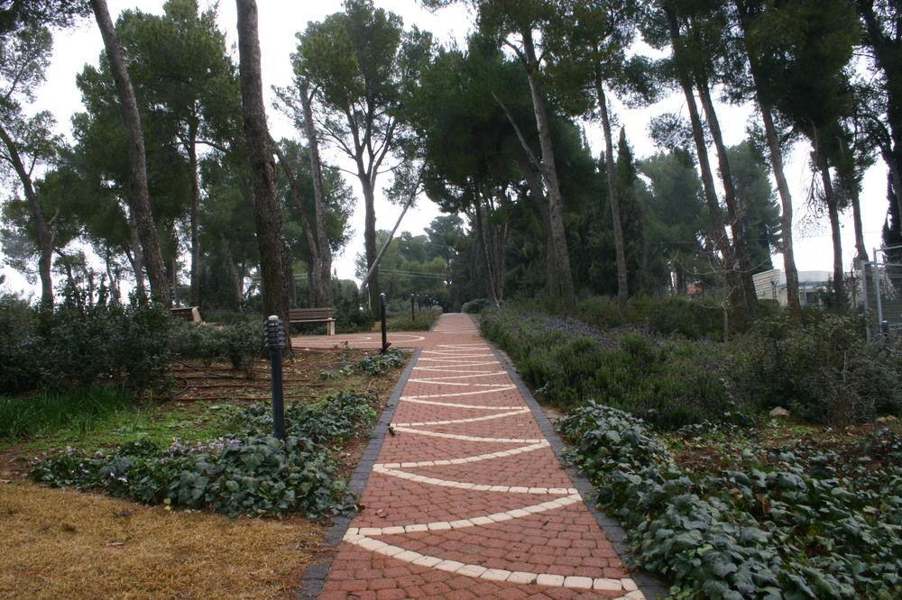 Cnaan Spa, Safed Image 4