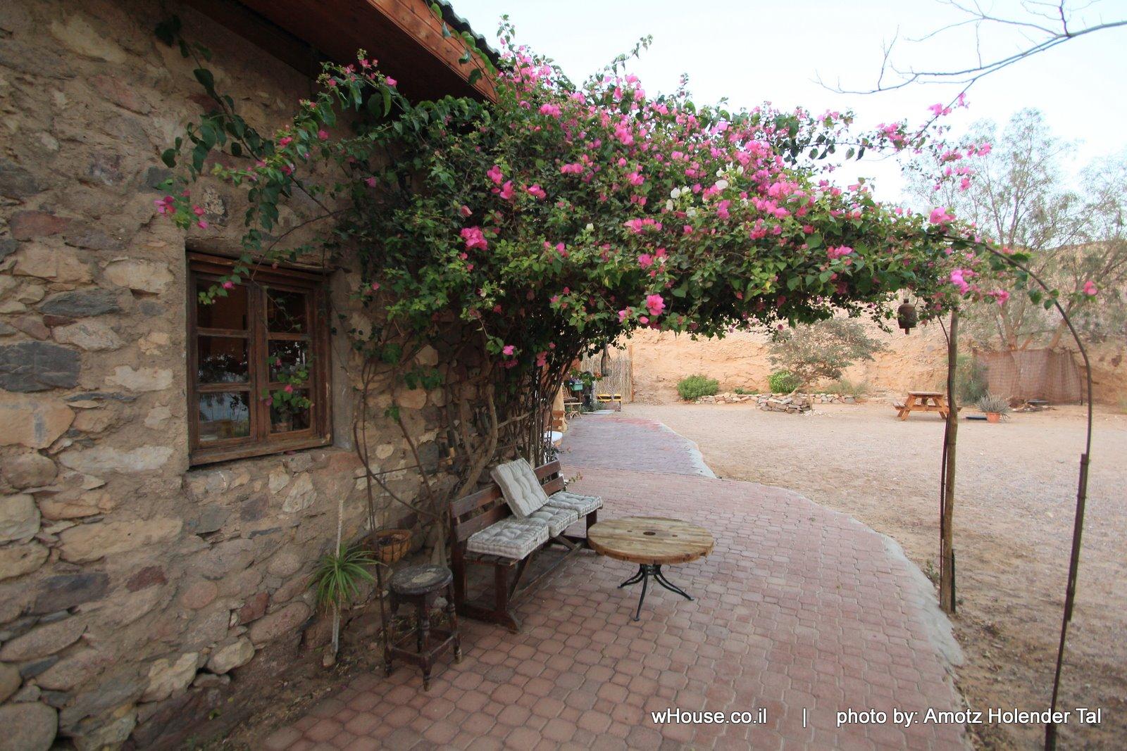 Williams House, Eilat Image 2