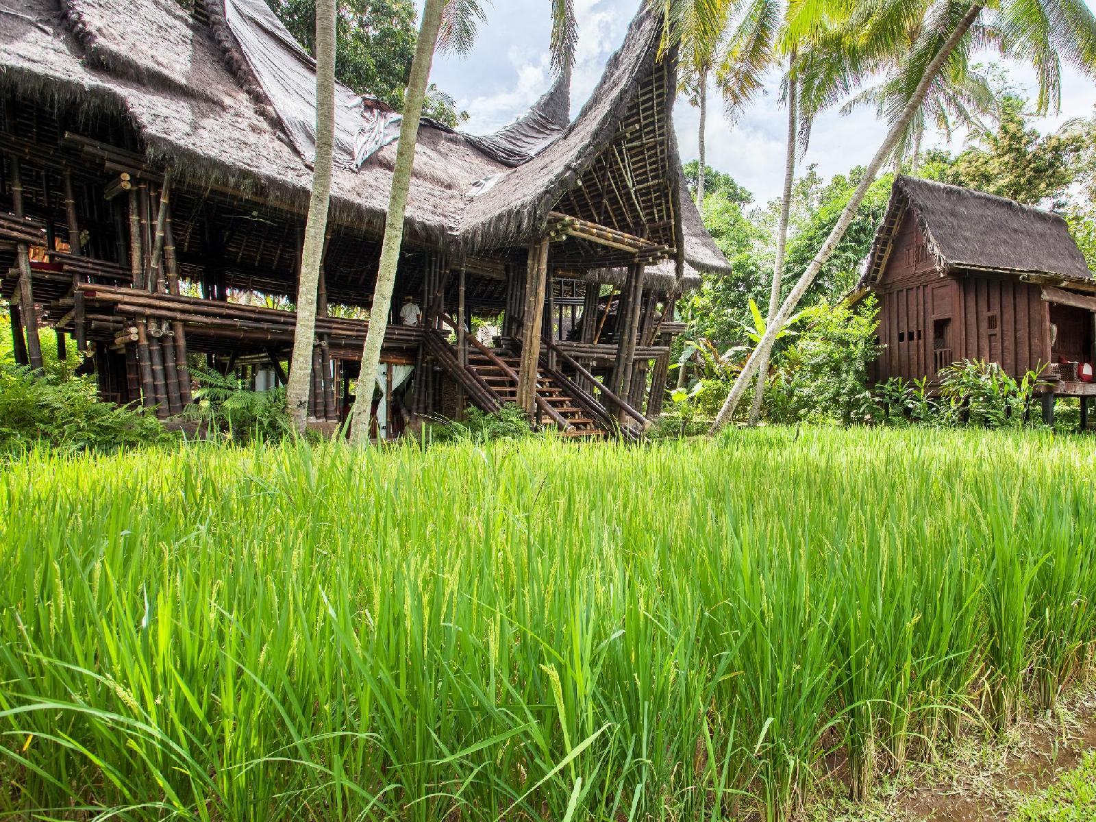 Bambu Indah, Ubud, Bali Image 3