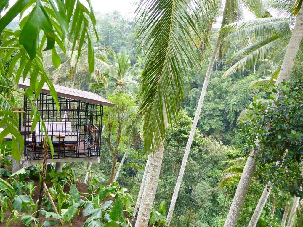 Hoshinoya Bali, Ubud Image 36