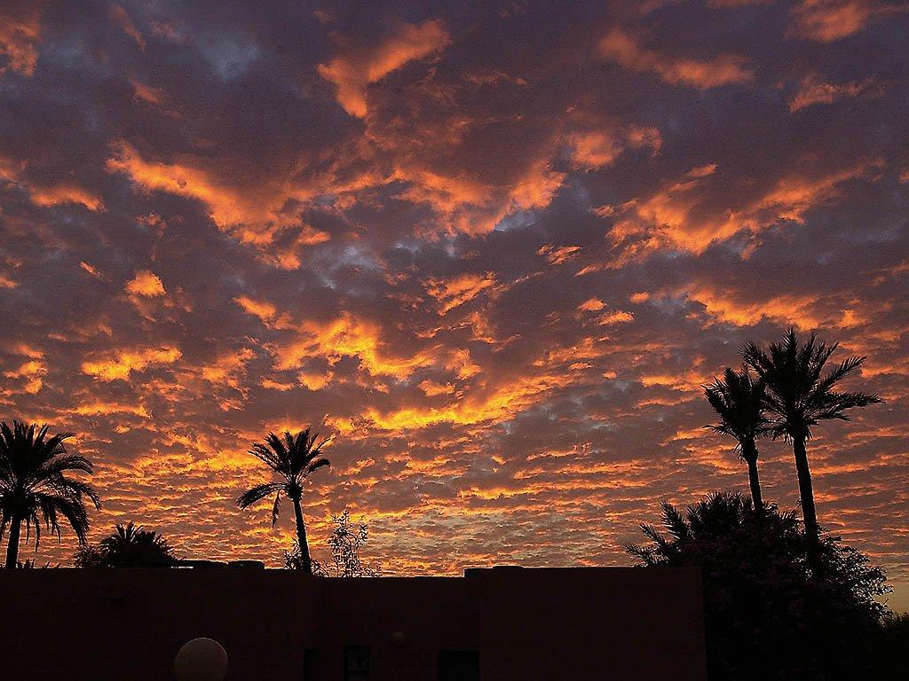 Sofitel Marrakech Lounge And Spa Image 41