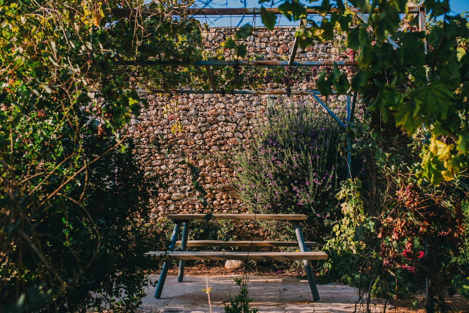 Tur Sinai Organic Farm Resort, Jerusalem Image 8