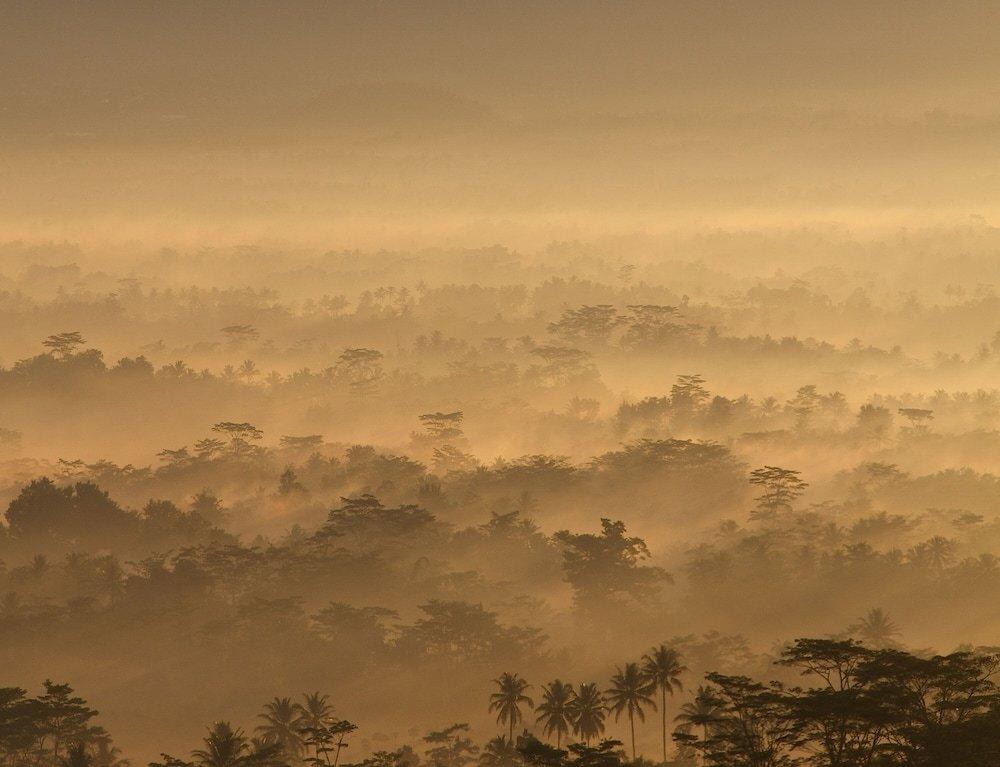 Villa Borobudur Resort Image 42