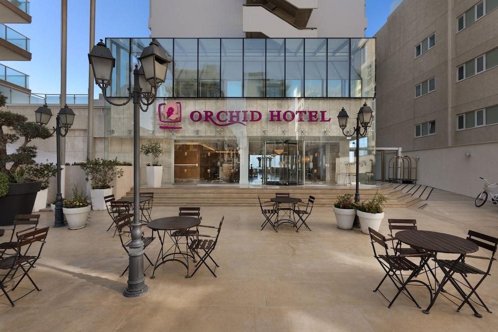 Orchid Tel Aviv Image 2