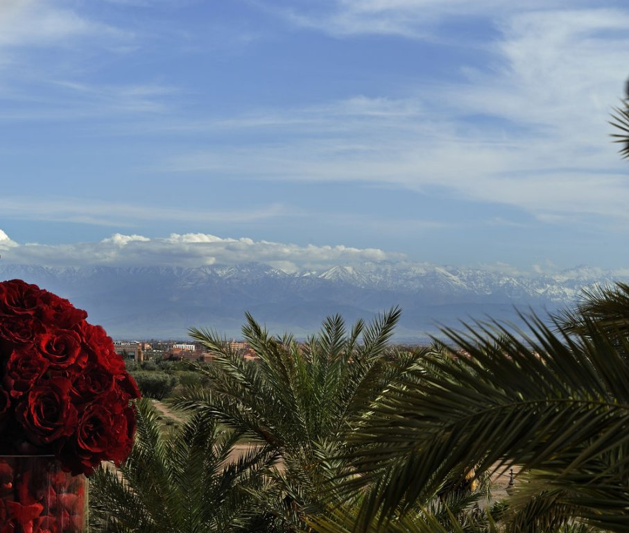 Sofitel Marrakech Lounge And Spa Image 40