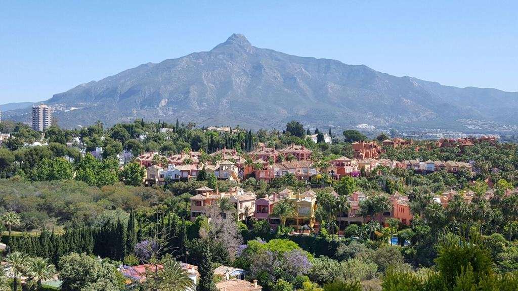 The Oasis By Don Carlos Resort, Marbella Image 7