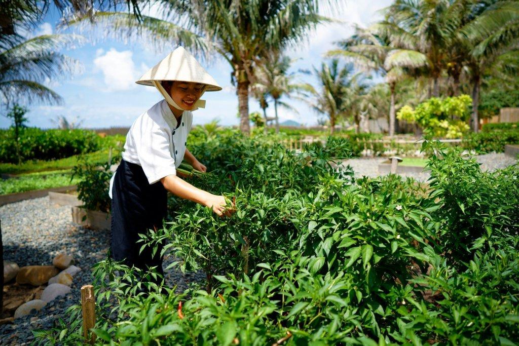 Six Senses Con Dao Island Image 28