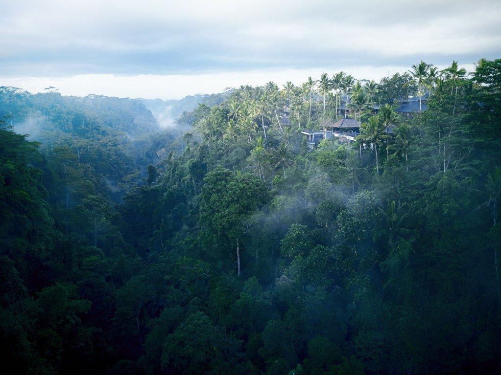 Hoshinoya Bali, Ubud Image 15