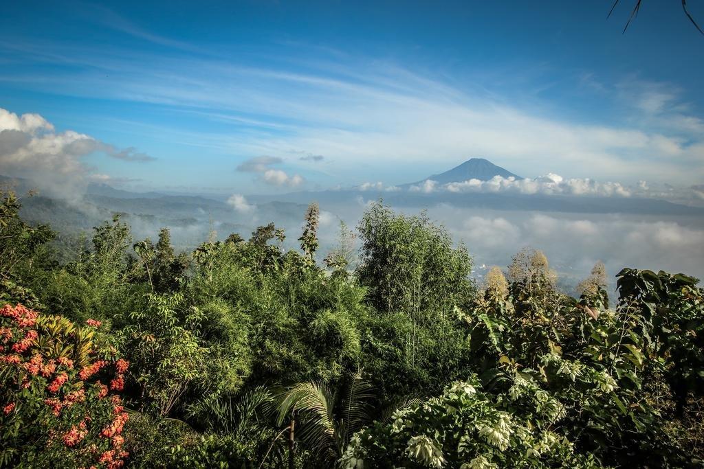 Villa Borobudur Resort Image 29