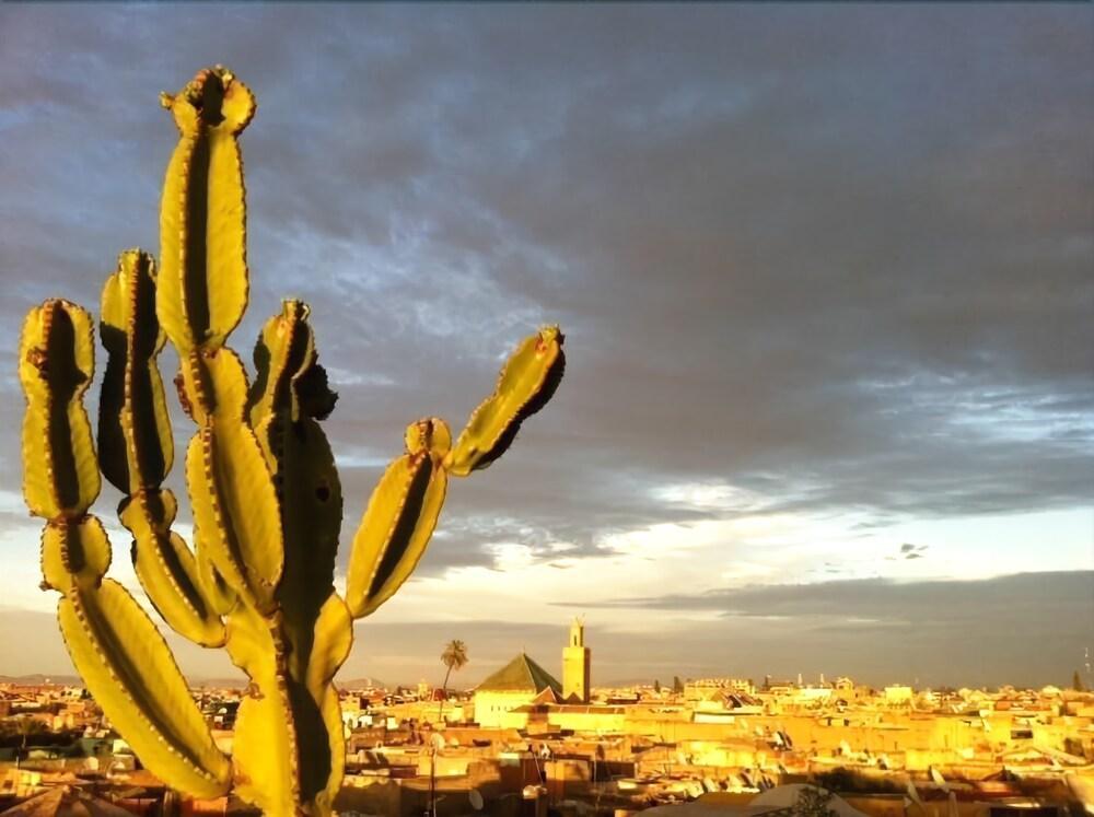 Riad 144, Marrakech Image 4