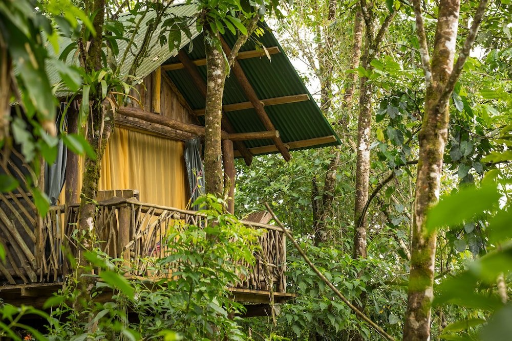 La Tigra Rainforest Lodge Image 28