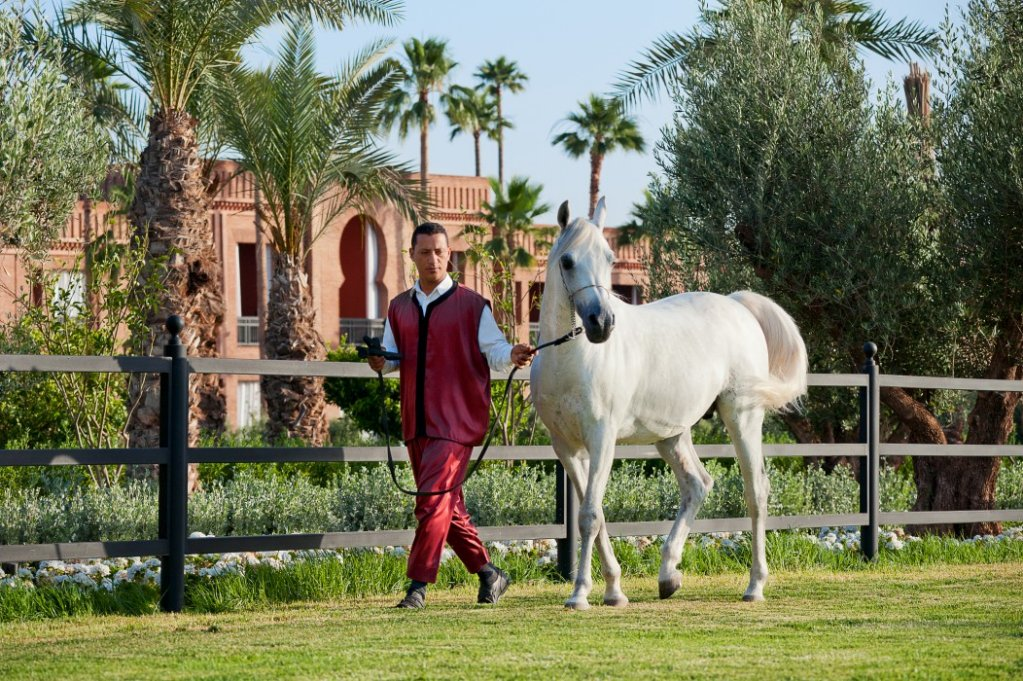 Selman Marrakech Image 18