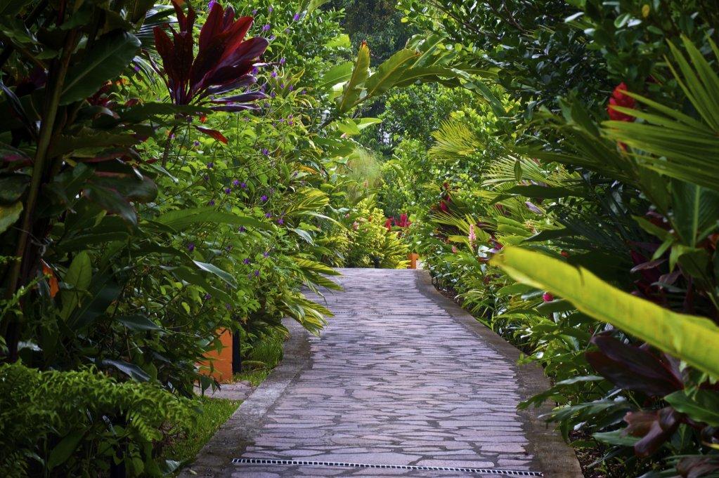 Nayara Gardens, La Fortuna Image 43