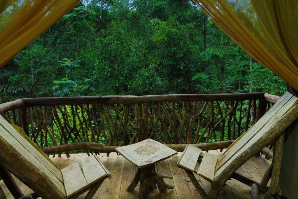 La Tigra Rainforest Lodge Image 14