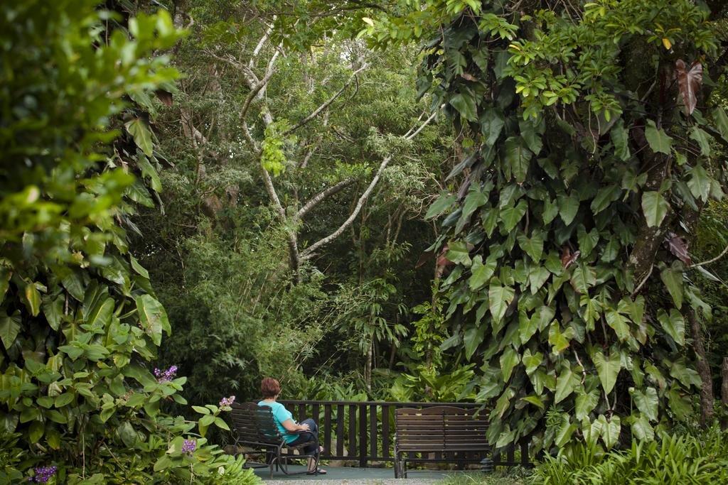 Monteverde Lodge & Gardens Image 37