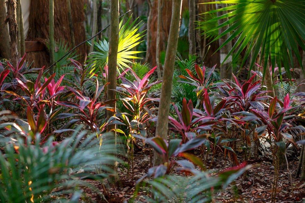 Habitas Tulum Image 49