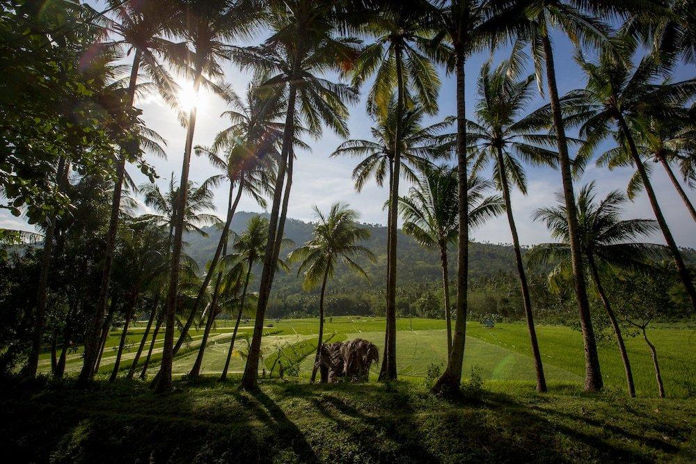 The Lombok Lodge Image 33