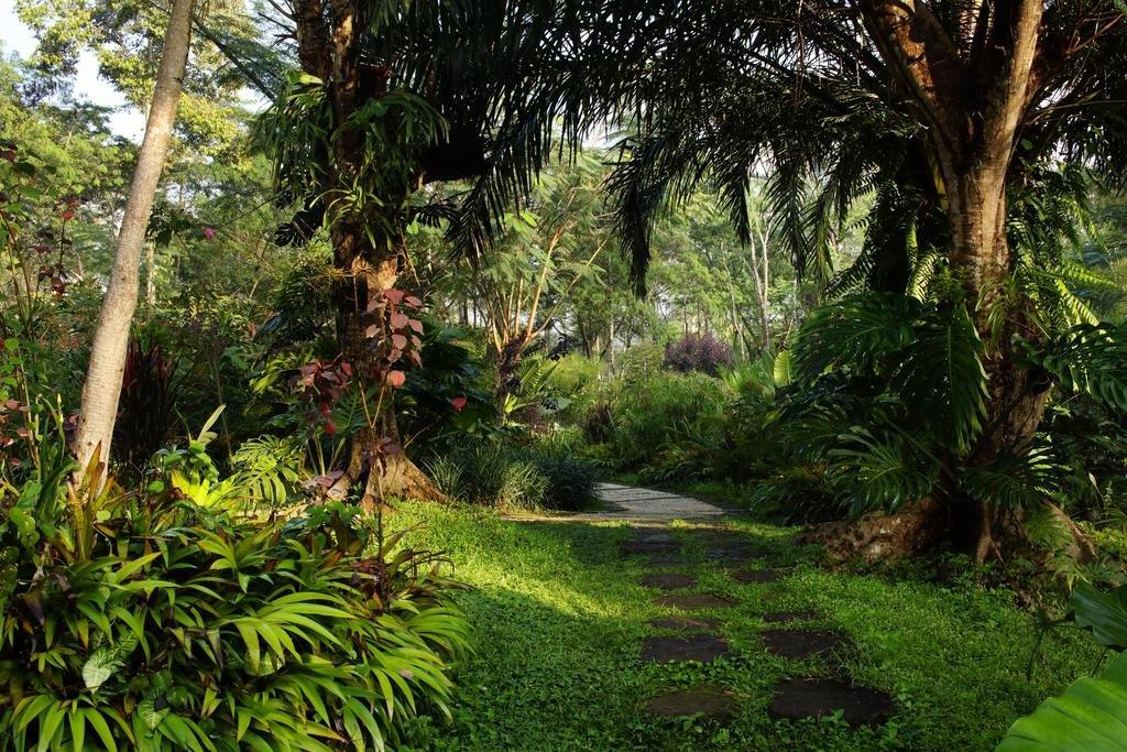 Mesastila Resort And Spa Magelang Image 15