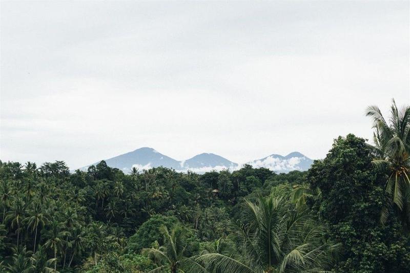 Bisma Eight, Ubud, Bali Image 37
