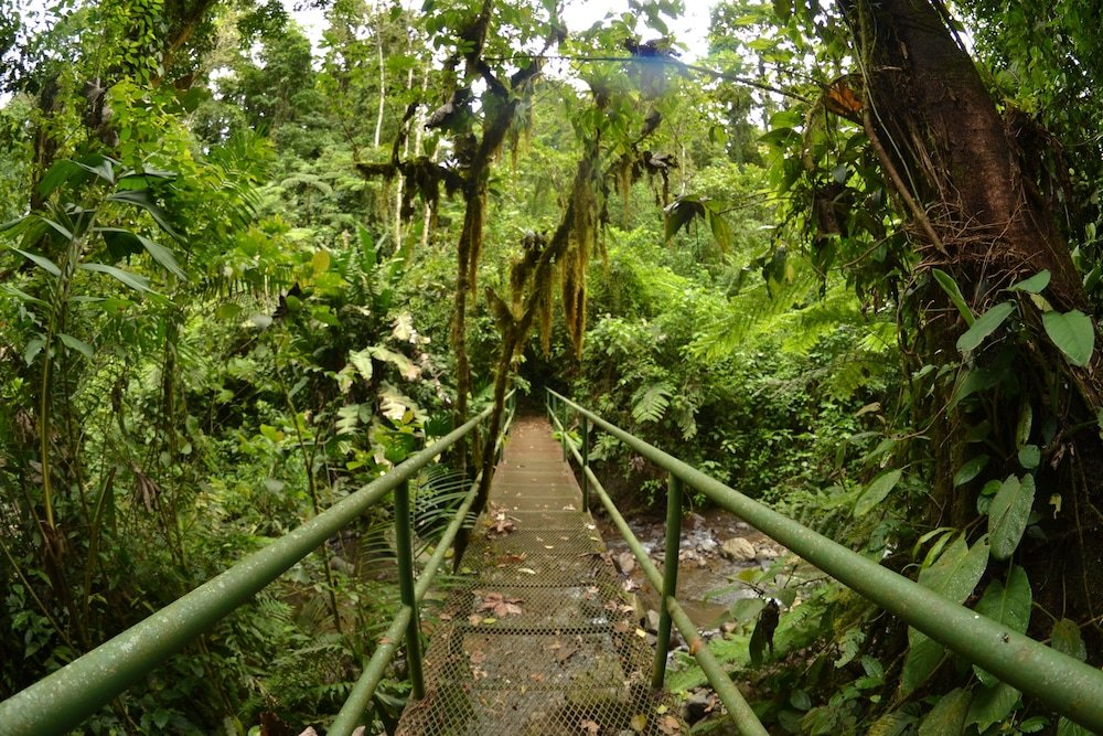 Lost Iguana Resort And Spa, Arenal Image 29