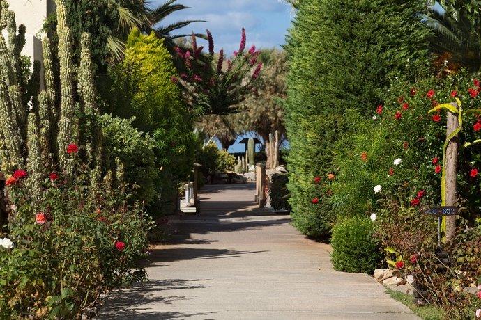 Cretan Malia Park A Member Of Design Hotels Image 34