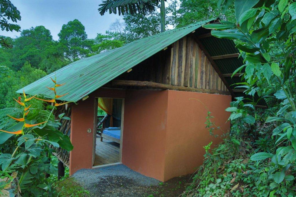 La Tigra Rainforest Lodge Image 12