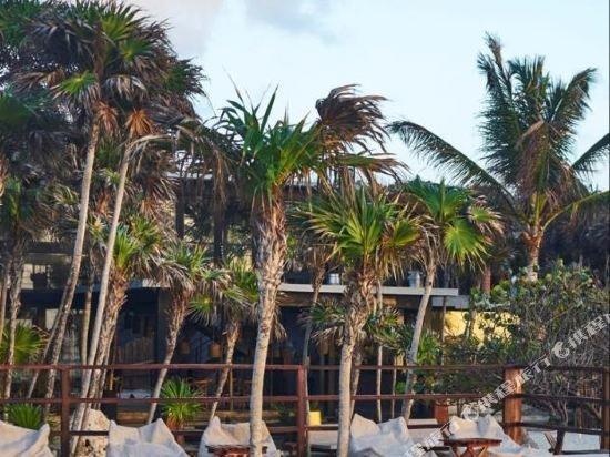 Habitas Tulum Image 32