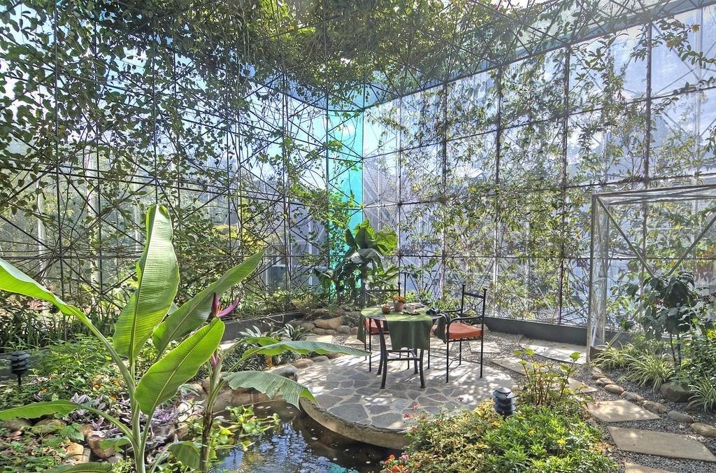 Monteverde Lodge & Gardens Image 6