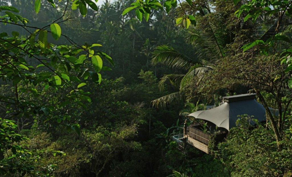 Capella Ubud, Bali Image 37