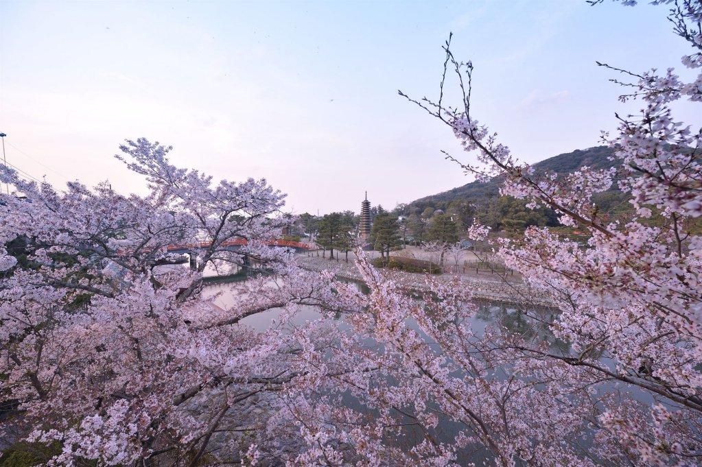 Kyoto Uji Hanayashiki Ukifune-en Image 22