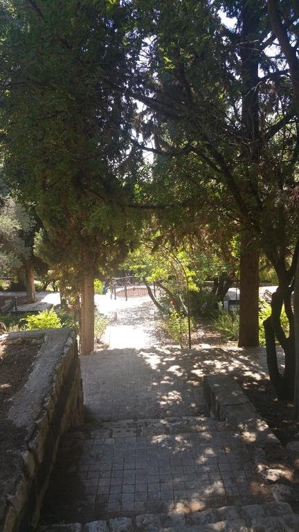 Hameiri Estate, Rosh Pina Image 11