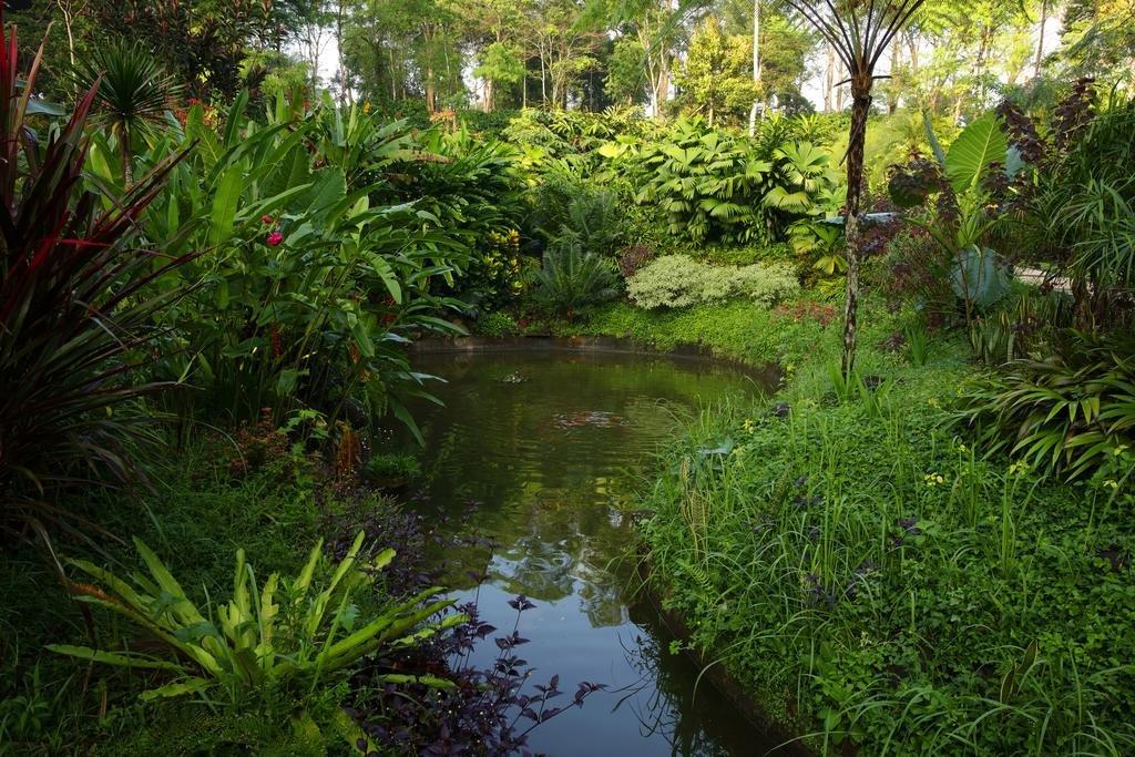 Mesastila Resort And Spa Magelang Image 31