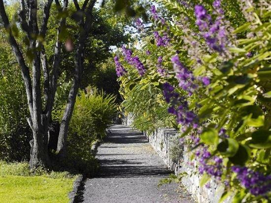 Quinta Da Casa Branca Image 19